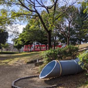 美園中央公園の公園レポ!大きな滑り台や遊具にどんぐり拾いも!