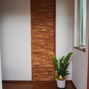 【web内覧会】玄関・エントランスクローク・1階トイレ