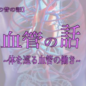血管の話 その① 〜体を巡る血管の働き〜【山吹薫の昔の話】