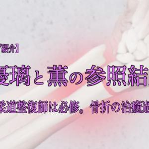優璃と薫の参照記録 その①  〜『柔道整復師は必修。骨折の治癒過程。』〜