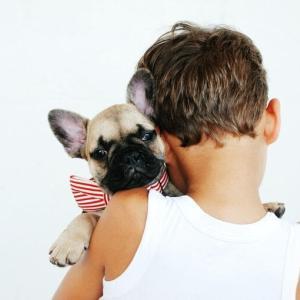 犬を飼う前に読んでほしいこと。飼育に必要な5つの覚悟と悲しい現実