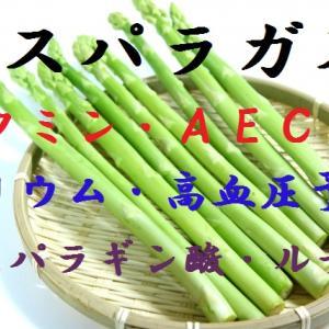 アスパラガス~緑と白は同じ品種、抗酸化作用が強く、動脈硬化やガン予防になり、おっしっこボルケージが高まる緑黄色野菜~