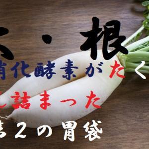 大根~近年では野菜の栄養が減っている?究極の大根おろしの作り方、大根は消化酵素が詰まった第2の胃袋~