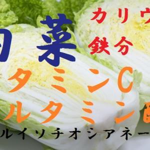 白菜~鉄分が多く鉄分以外にも貧血改善作用あり、ミンキムチ風浅漬けにご注意、白菜の保存方法・選び方・相性の良い食材~