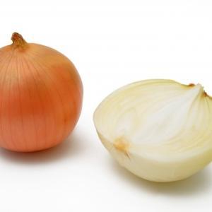 タマネギ~実は葉っぱ、新玉葱の品種は?薬効成分が豊富、血糖値を下げ、感染症を予防する淡色野菜、タマネギの栄養・保存法・選び方~