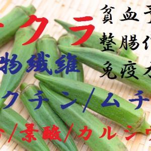 オクラ~ぬめりも大事な栄養です。ヌルヌル魂(スピリッツ)を持った食物繊維豊富な五角形野菜、栄養素と効果・保存法~