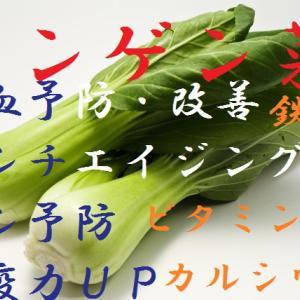 チンゲン菜~ビタミンもミネラルも豊富で優秀な緑黄色野菜で中国野菜、貧血対策、骨太効果、ガン予防、かなりの低カロリー食品~