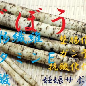 ゴボウ~薬になる日本特有の淡色野菜、大腸ガン予防にリグニン、妊娠サポートに整腸作用、細いけど薬効満載根菜~
