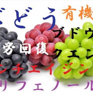 ぶどう~有機酸とポリフェノールの宝庫でもビタミンとミネラルは…白葡萄=マスカットは間違い、表面に付着している白い粉の正体は?~