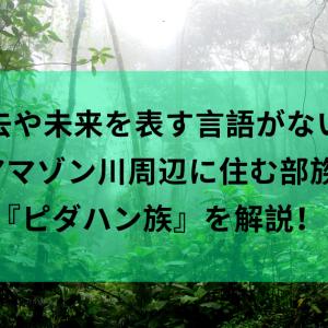 『今』を生きる思想を学ぶ!アマゾン川周辺に住む部族『ピダハン族』! [モチベ系]