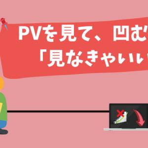 【ブログ初心者】 PVやアクセスを気にして凹むなら、見なきゃいい