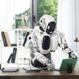 実現化されたロボットペットシッター