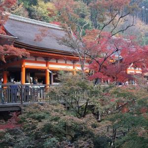 ◆そうだ京都へ行こう!