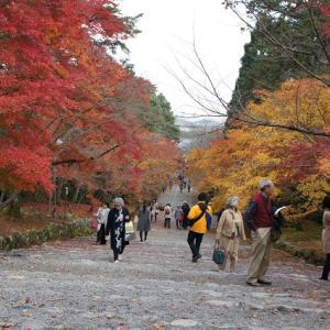 ◆そうだ京都へ かしこ処 京都御所 仙洞御所抽選当選