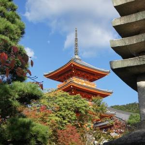 ◆初日の京都サマリー:そうだ京都へ行こう2019
