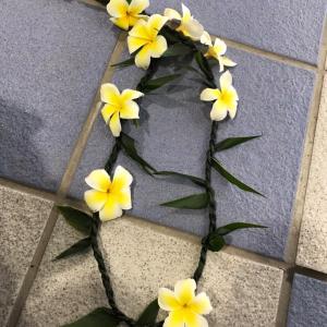 ◆小笠原お見送りの花のレイを頂く、さあコロナの里東京へ