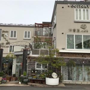 【名古屋市天白区】花屋と雑貨屋さんのカフェ|洋書屋.cafe カトニー本店|