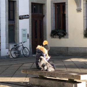 スイス・フランスの犬事情レポート