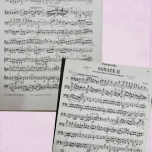 ピアノ伴奏のサイト