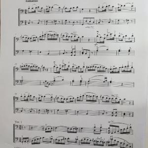 チェロデュオ練習