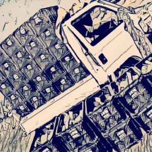 2020/11/12 収穫 防除