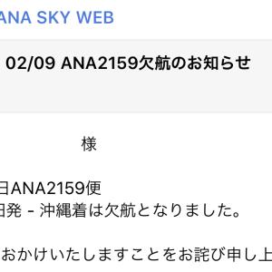 SFC修行 第8レグ 成田空港欠航! 修行初のトラブル発生!! ANA471 20190209