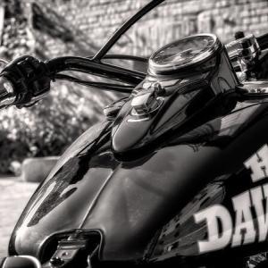 バイクはどの排気量がおすすめなのか?『見た目で選べばOK』な理由
