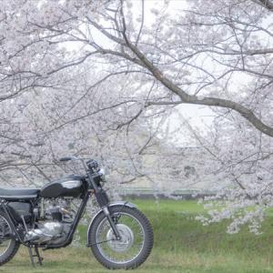 春から大学生になるあなたへ!【バイクデビュー前にするべきこと5選】