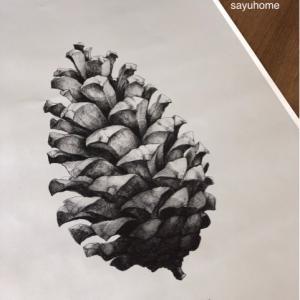 冬らしいポスター!!人気のパインコーン♡やっぱり素敵です(´∀`*)