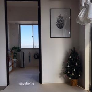 クリスマスツリーを飾りました(*´∇`*)それから、scopeさんのフロストベリー!!!