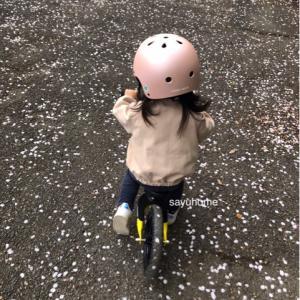 週末のお花見?サイクリング(´∀`)それから、釜-1グランプリと息子。