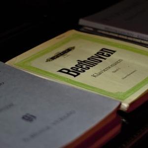 シノーポリ ベートーヴェン交響曲第9番 唯一の録音