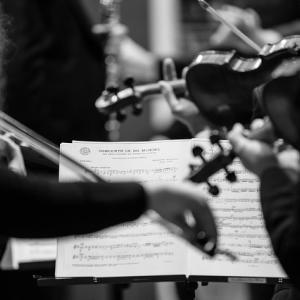ベートーヴェン ピアノ,ヴァイオリンとチェロのための協奏曲 チョントリオ