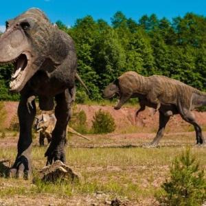 恐竜と古代生物 アニマルプラネット