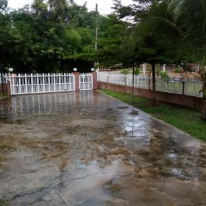 昨日、今日と朝から雨で 涼しくなりました。