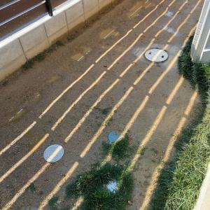 庭に暗渠を作って排水を改善