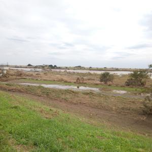台風が去ったあとの利根川から環境問題を考える!!