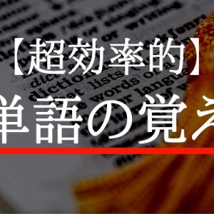【大学受験】センター194点!最強の英単語の覚え方は〇〇すること