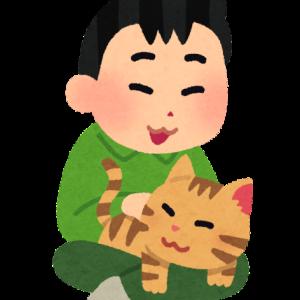 飼い主の真似をする猫