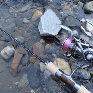 2020年の渓流釣行はボーズから始まった・・・・・・と言う話