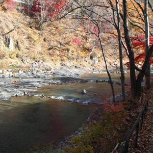 上野村冬季ハコスチ釣り場に行ってみた♪