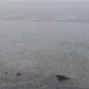 2021年6月中旬の中禅寺湖釣行は雨でした……と言う話