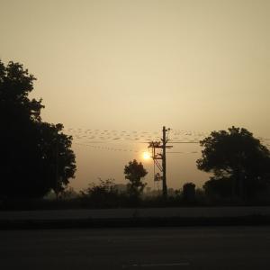 日食後・・