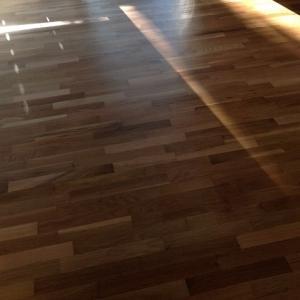 無垢フローリング床にするなら知っておきたいメリット・デメリット