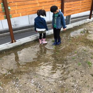【#おうち時間】お庭で新しいスポーツを開発!?シャボン追加でワヤクソ(笑)