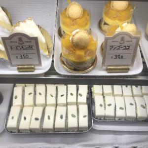 レアチーズケーキといえば、赤坂の老舗洋菓子店「しろたえ」