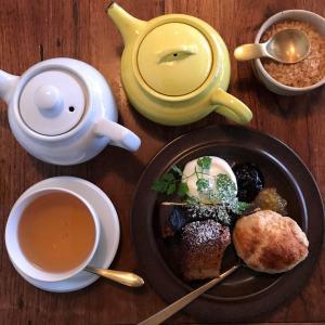 紅茶専門カフェ「マヒシャ」が作る、サクサク系スコーン