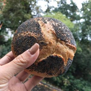 石窯×薪で焼き上げる硬派なパン屋「Soluna」