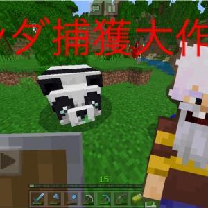 【マインクラフト】パンダ捕獲大作戦!!大苦戦の途中に空飛ぶ仲間も合流!?