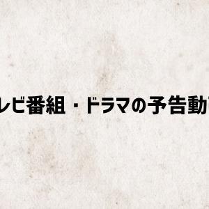 岡田健史主演「いとしのニーナ」が地上波放送決定! 若手注目キャストが多数出演